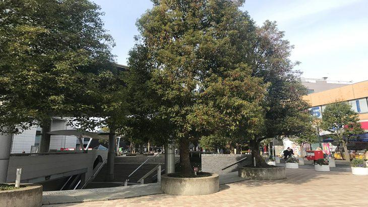 成川薬局用賀店(東京都世田谷区)に訪問してきました!
